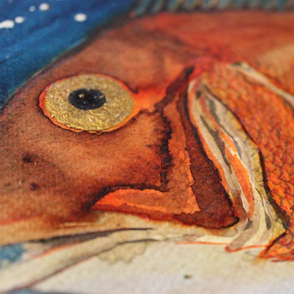 Red sea bream print by Alan McLeod